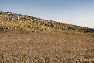 【自然風景】青空の下の四国カルストの写真素材 [FYI04847317]