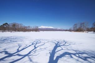 大沼と駒ケ岳の写真素材 [FYI04847348]