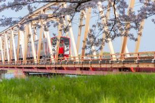 桜と電車の写真素材 [FYI04847561]