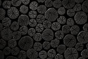 クヌギ炭の写真素材 [FYI04847604]