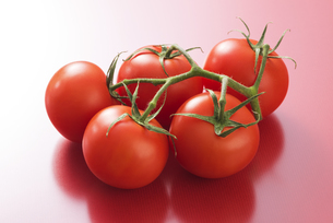 真っ赤に熟したトマトの写真素材 [FYI04847685]