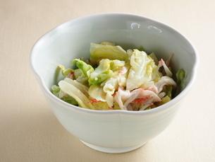 茹で野菜サラダの写真素材 [FYI04847719]