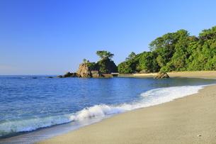 桂浜の写真素材 [FYI04848328]