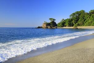 桂浜の写真素材 [FYI04848332]
