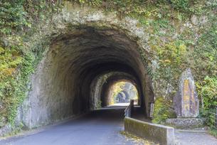 秋の耶馬渓 青の洞門の写真素材 [FYI04848380]