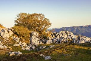 【自然風景】夜明けの四国カルストの写真素材 [FYI04848544]