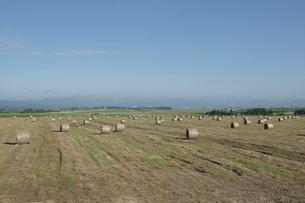 牧草ロールが並ぶ草原と飛行場の写真素材 [FYI04848734]