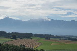 夏の畑作地帯と山並み 十勝岳連の写真素材 [FYI04848735]