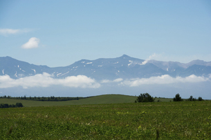草原と夏の山並みの写真素材 [FYI04848738]