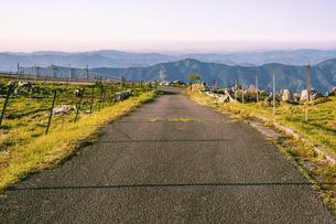 【自然風景】夜明けの四国カルスト 朝の写真素材 [FYI04848748]