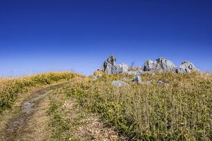【自然風景】青空の下の四国カルスト 岩石の写真素材 [FYI04848749]