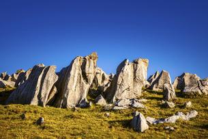 【自然風景】青空の下の四国カルスト 岩石の写真素材 [FYI04848751]