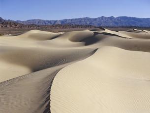デスバレーの砂丘の写真素材 [FYI04848982]