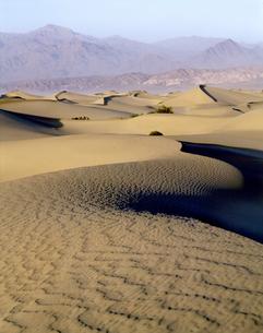 デスバレーの砂丘の写真素材 [FYI04848983]