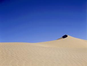デスバレーの砂丘の写真素材 [FYI04848986]