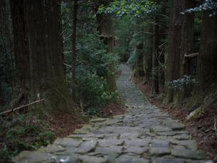 熊野古道の写真素材 [FYI04849037]