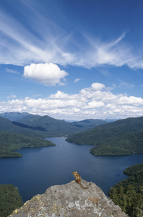 然別湖とエゾシマリス(北海道・鹿追町)の写真素材 [FYI04849100]