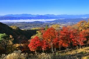 横谷峡の紅葉と中央アルプスに御嶽山の写真素材 [FYI04849176]