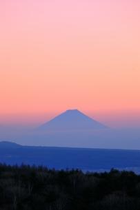 霧ヶ峰より富士山と夕焼けの写真素材 [FYI04849209]