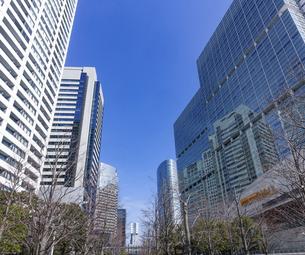 青空にそびえる 品川の高層ビル群(品川インターシティ)の写真素材 [FYI04849404]