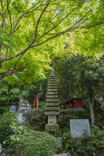 修善寺温泉 指月殿境内にある南想塔と石碑の写真素材 [FYI04849543]