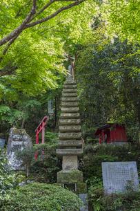 修善寺温泉 指月殿境内にある南想塔と石碑の写真素材 [FYI04849544]