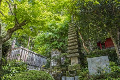 修善寺温泉 指月殿境内にある南想塔と石碑の写真素材 [FYI04849545]