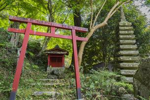 修善寺温泉 指月殿境内にある南想塔と鳥居の写真素材 [FYI04849546]