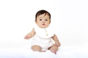 白背景でお座りするカメラ目線の女の子の赤ちゃん。成長,健康,元気,育児イメージの写真素材 [FYI04849614]