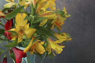 青い花瓶に活けたアルストロメリアの花束の写真素材 [FYI04849650]