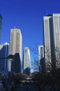 青空を背景にそびえ立つ西新宿の超高層ビル群の写真素材 [FYI04850092]