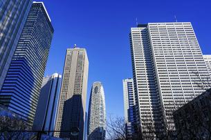 青空を背景にそびえ立つ西新宿の超高層ビル群の写真素材 [FYI04850093]
