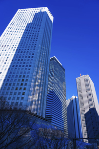 青空を背景にそびえ立つ西新宿の超高層ビル群の写真素材 [FYI04850094]