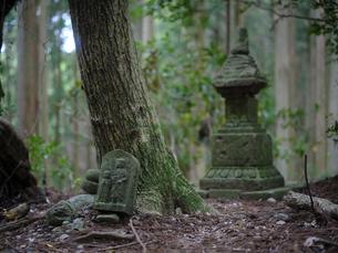 熊野古道の石像の写真素材 [FYI04850250]