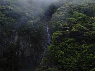 霧と山の写真素材 [FYI04850259]