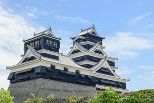 熊本城「足場が消えた復旧天守輝く熊本城」2021年春の写真素材 [FYI04850800]