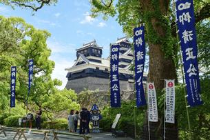 熊本城「足場が消えた復旧天守輝く熊本城」2021年春「観光客風景」の写真素材 [FYI04850811]