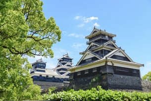 熊本城「足場が消えた復旧天守輝く熊本城」2021年春の写真素材 [FYI04850812]