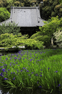 奈良県天理市の長岳寺の写真素材 [FYI04850942]
