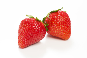真っ赤に熟した苺の写真素材 [FYI04851069]