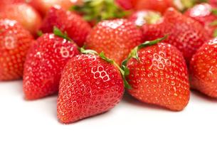 真っ赤に熟した苺の写真素材 [FYI04851071]