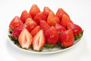 真っ赤に熟した苺の写真素材 [FYI04851077]