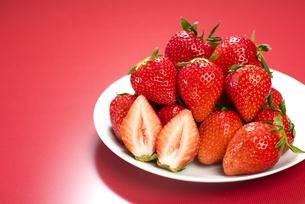 真っ赤に熟した苺の写真素材 [FYI04851078]