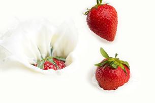 ミルクと苺の写真素材 [FYI04851086]