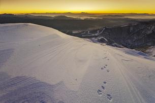 八方尾根からの夜明けとノウサギの足跡の写真素材 [FYI04851493]