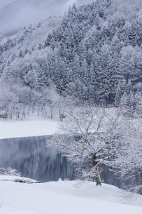 雪景色の中綱湖の写真素材 [FYI04851529]