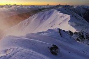中央アルプス_サギダル頭からの南陵を見る夜明けの写真素材 [FYI04851538]