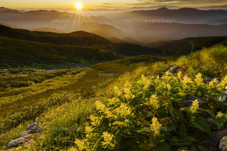 乗鞍岳からの朝日輝くオンダテの写真素材 [FYI04851544]