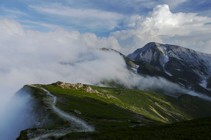 白馬丸山から白馬鑓ヶ岳方面の稜線の写真素材 [FYI04851550]