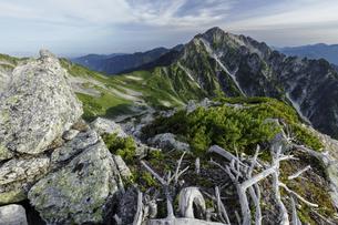 別山北峰から剣岳を望むの写真素材 [FYI04851552]